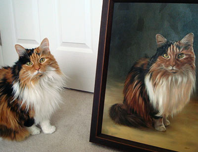 Cat Portraits Testimonials