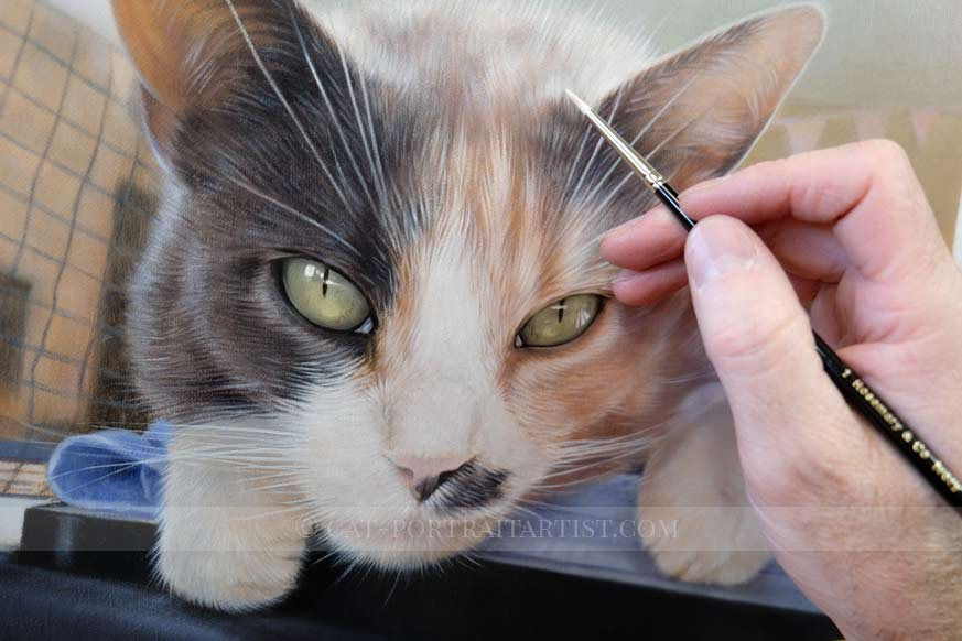 Cat Oils Portraits by Nicholas Beall