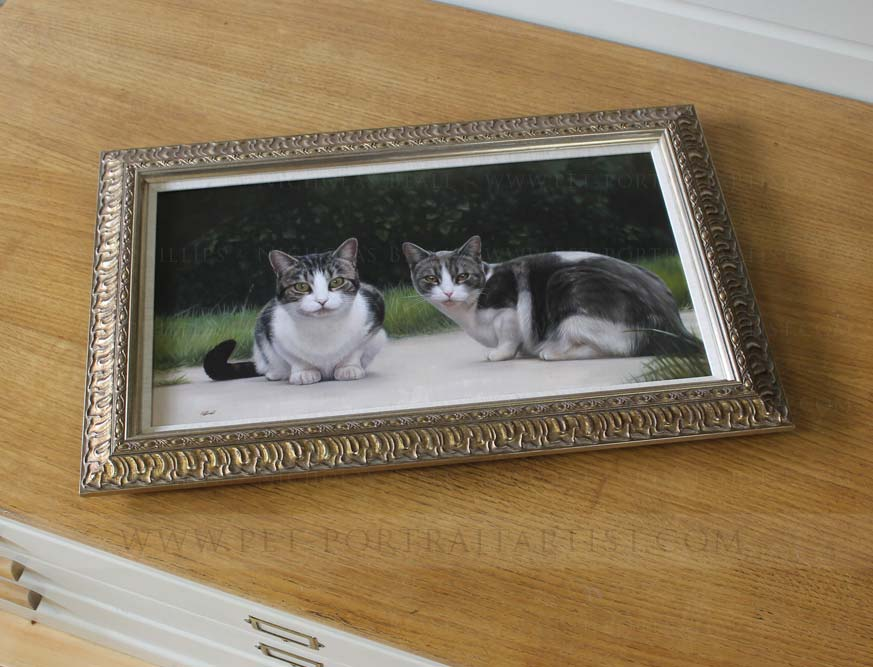 cat portraits in oils framed