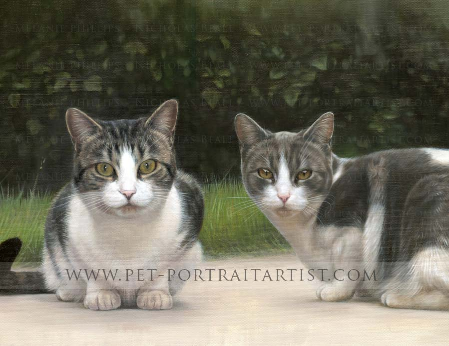 cat portrait in oil of Milly and Molly