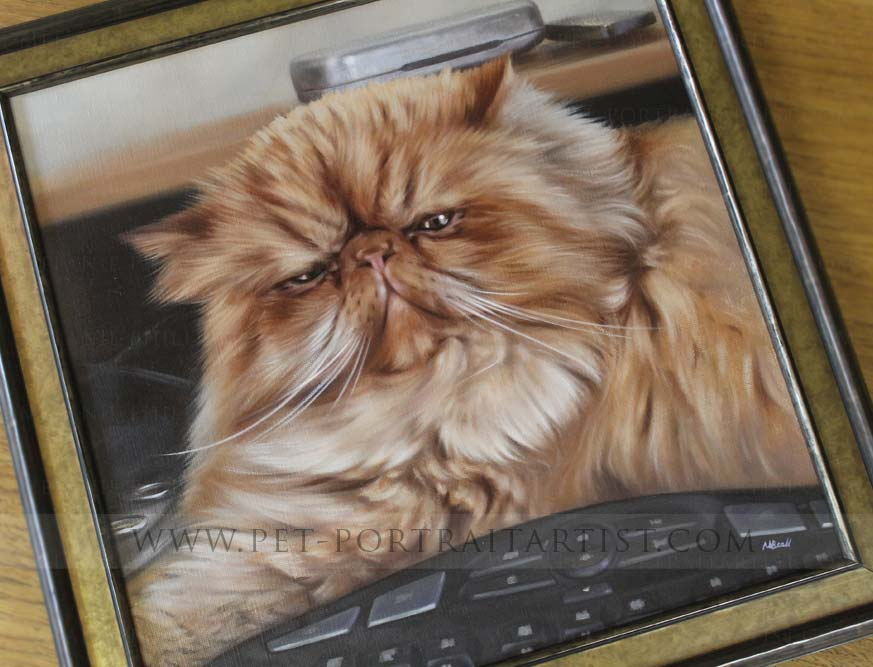 cat portraits framed by Jane our framer