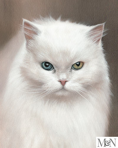 white cat portraits in oils on canvas